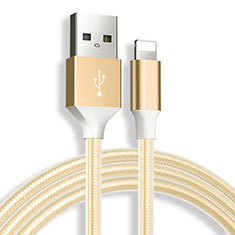 Cavo da USB a Cavetto Ricarica Carica D04 per Apple iPad 10.2 (2020) Oro
