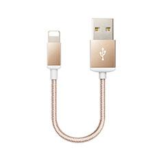 Cavo da USB a Cavetto Ricarica Carica D18 per Apple iPhone 12 Pro Max Oro