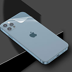 Pellicola Protettiva Retro Proteggi Schermo Film per Apple iPhone 12 Pro Max Chiaro