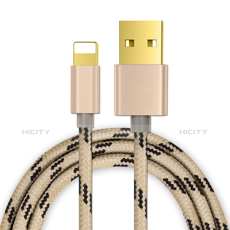 Cavo da USB a Cavetto Ricarica Carica L01 per Apple iPhone 11 Pro Oro