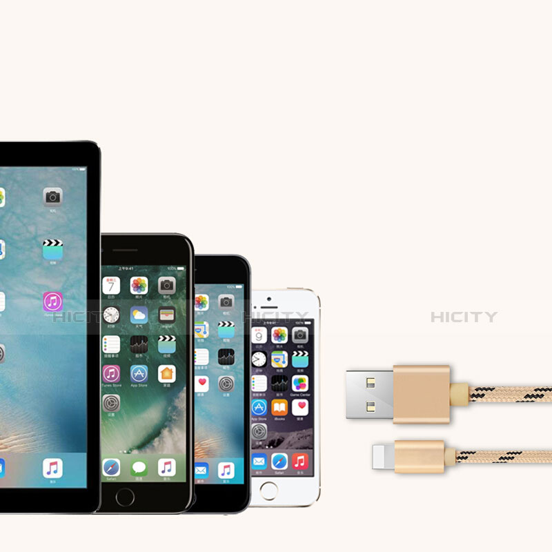 Cavo da USB a Cavetto Ricarica Carica L05 per Apple iPhone 11 Pro Oro